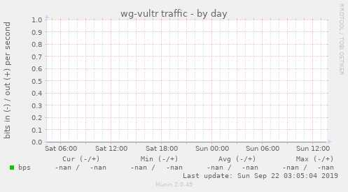 wg-vultr traffic